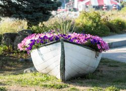 Maine boat with flowers