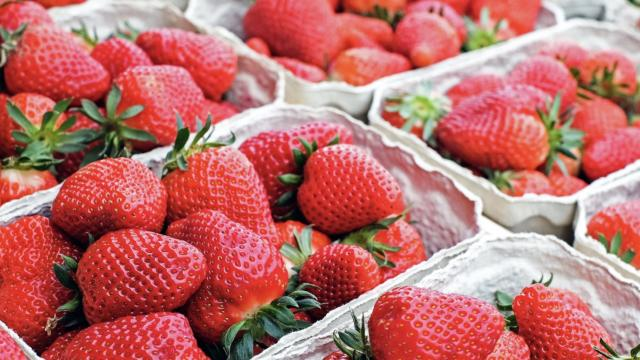 pints of fresh picked strawberries