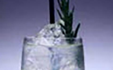 Henrick's Rosemary Agave Scratch Collins
