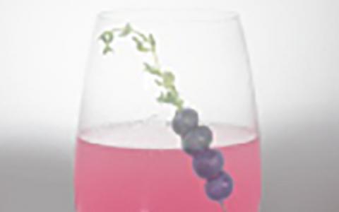 Hendrick's Hibiscus & Raspberry Tea Thyme Martini