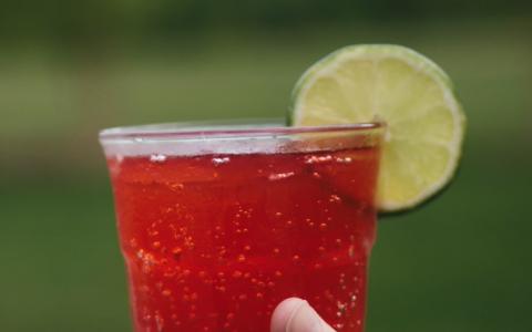 Hendrick's Raspberry Ginger Sour