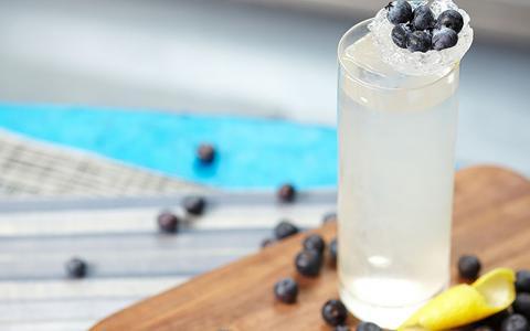 Blueberry Vodka & Soda
